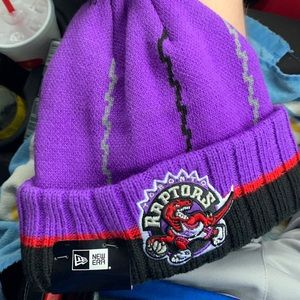 Raptors Knit Hat